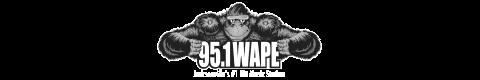 95.1 WAPE